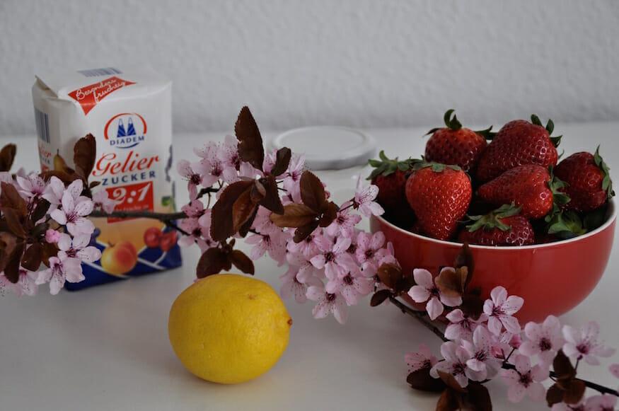 Leckere Erdbeer Pfefferminz Marmelade
