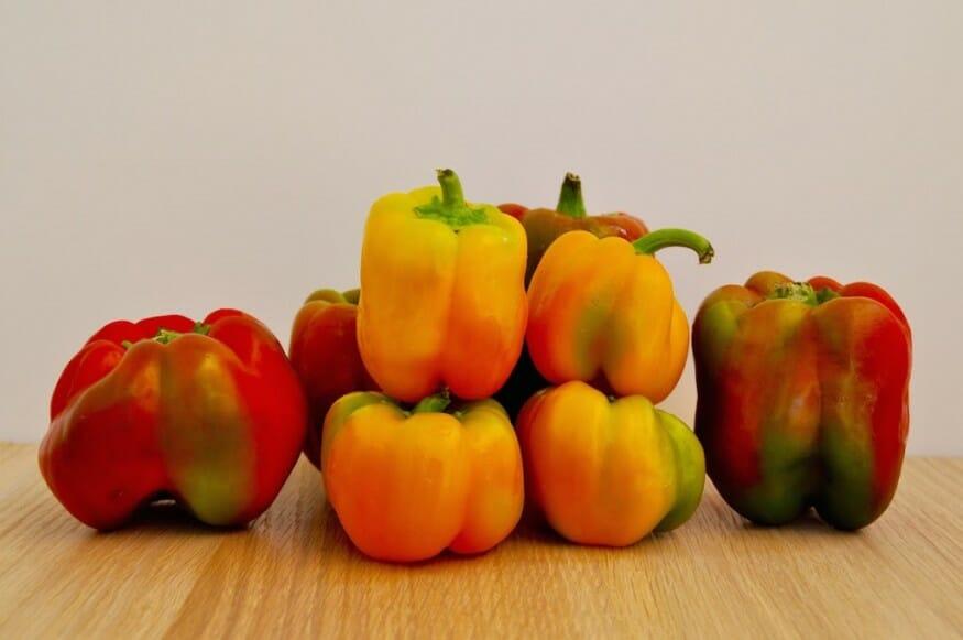 Bunte Paprika