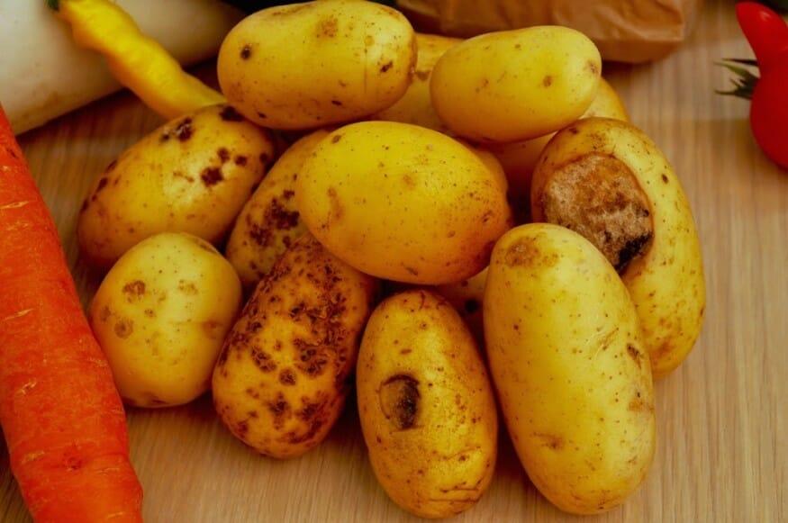 Kartoffeln mit Stellen